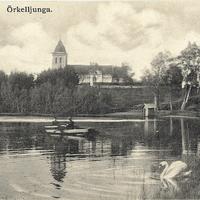 Prästsjön - eka - svan.jpg